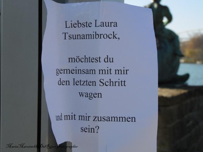 Traducción: Queridisima Laura Tsunamibrock, deseas caminar conmigo el último paso y estar por siempre juntos ?